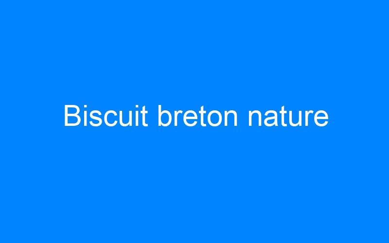 Biscuit breton nature