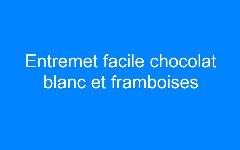 Entremet facile chocolat blanc et framboises