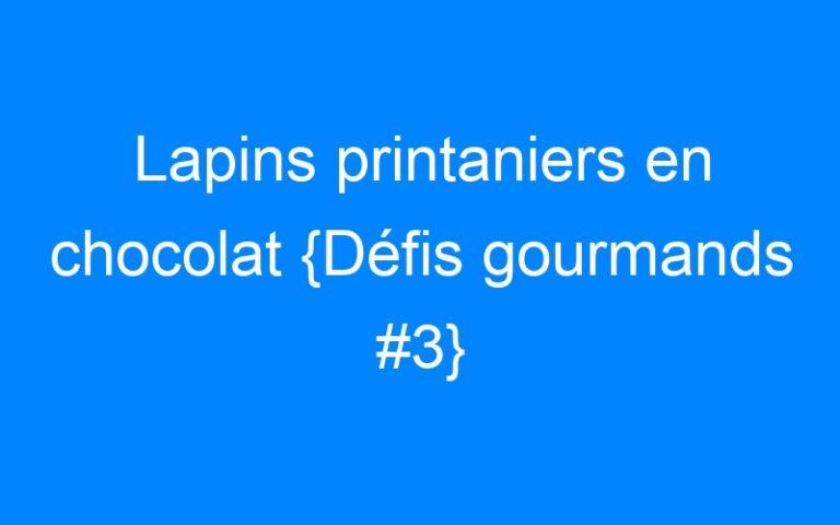Lapins printaniers en chocolat {Défis gourmands #3}