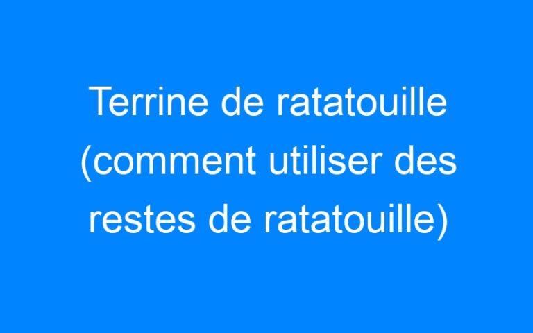 Terrine de ratatouille (comment utiliser des restes de ratatouille)
